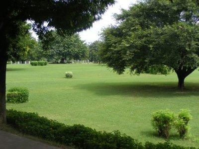 Yeşil bahçe
