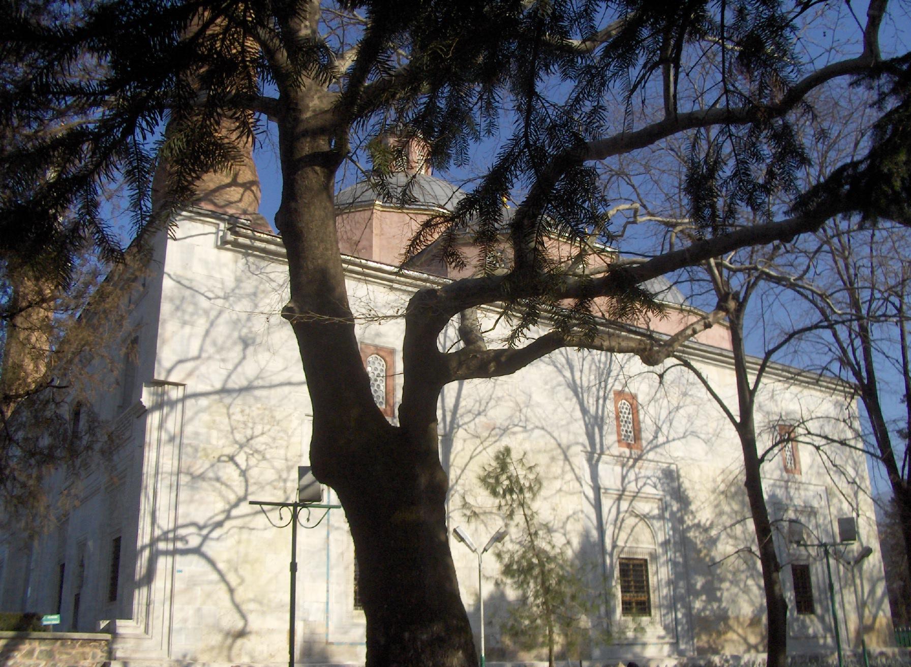 Yesil Cami - Bahçe